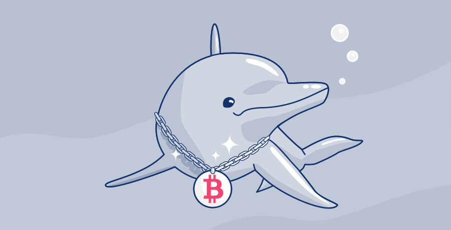 crypto animals dolphin