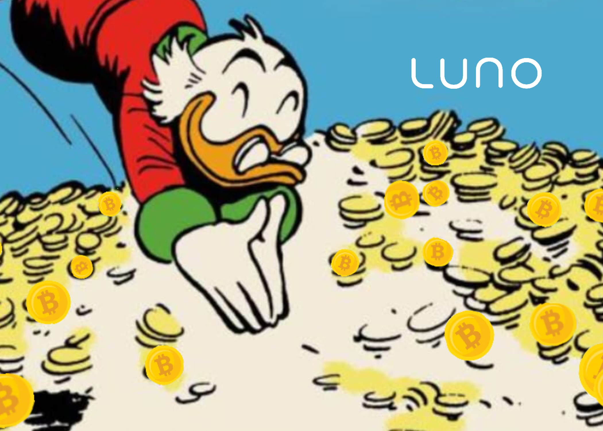 Bitcoin cash cad price